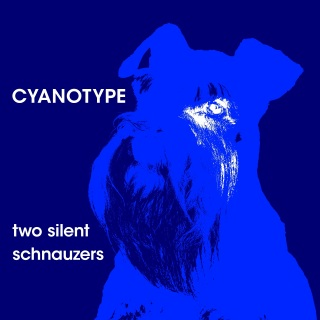 Two Silent Schnauzers cover